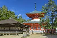 和歌山県 高野山根本大塔