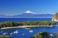 静岡県 戸田港と御浜岬と富士山