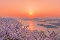 広島県 三原市 竜王山と桜の朝日