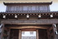 静岡県 駿府城公園の東御門の柱