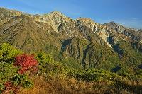 長野県 朝の八方尾根から白馬三山