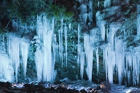 埼玉県 三十槌の氷柱ライトアップ