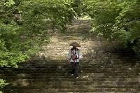 高知県 四国霊場第31番 竹林寺 新緑の石段を下りるお遍路さん