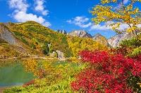 長野県 紅葉と不帰ノ嶮 八方池