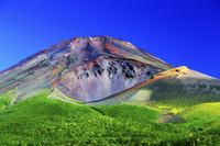 静岡県 水ヶ塚公園より富士山と宝永山
