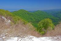 福井県 越前甲山から新緑の山陵