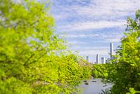 セントラルパーク ザ レイク沿いに生い茂る新緑の木々とミッドタ...