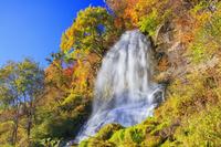 長野県 紅葉の乙女滝 横谷渓谷