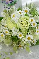 グリーンのバラと草花