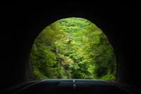 トンネル向こうの新緑 南伊豆 静岡県