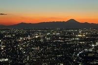 東京都 都庁展望室からの夜景 富士山