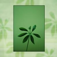 グリーンのエコライフ