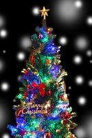 クリスマスツリーと雪