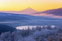 長野県 高ボッチ