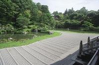 京都府 仁和寺 宸殿の北庭