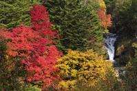 長野県 横谷峡 紅葉とおしどり隠しの滝