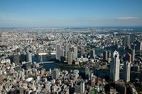 東京都 明石町より佃地区のマンション群と隅田川