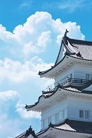 神奈川県 小田原城