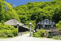 秋田県 鶴の湯温泉