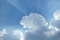 京都伏見稲荷大社の雲