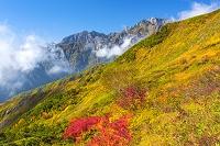 長野県 紅葉と北アルプス