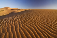 モロッコ サハラ砂漠 シェビ砂丘
