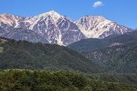 初秋の白馬鑓ヶ岳と杓子岳