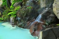 鹿児島県 霧島市 霧島神宮 境内の温泉の池