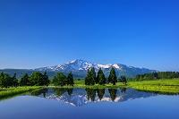 秋田県 朝の鳥海山