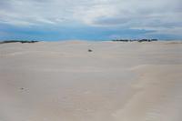 オーストラリア ランセリン大砂丘