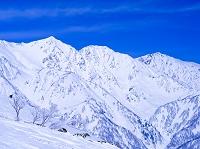 長野県 冬の白馬連峰(左より白馬鑓ヶ岳・杓子岳・白馬岳)