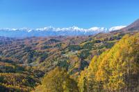 長野県 白沢峠より白馬連山