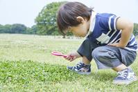 虫眼鏡で観察をする日本人の男の子