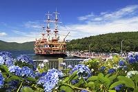 芦ノ湖の海賊船と紫陽花