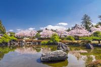 大石寺の庭園と池に映る富士山