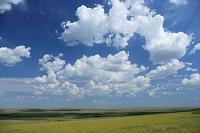 モンゴル ドルノド県 スンベル ノモンハン事件