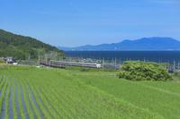 滋賀県 JR湖西線と田園