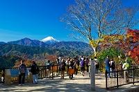 東京都 八王子市 高尾山山頂と富士山の紅葉