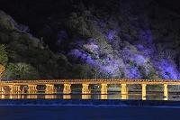 京都府 嵐山花灯路 ライトアップされた渡月橋と桂川