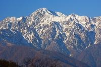 長野県 朝の五竜岳