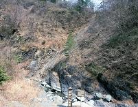フォッサマグナの断層面(新倉の大断層) 3月 山梨県 早川町