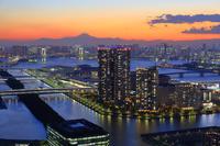 東京都 江東区 富士山 豊洲市場