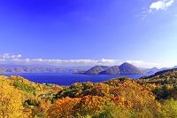 北海道 洞爺湖と紅葉鮮やかな森林