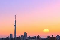東京都 荒川河川敷から見る夕刻の東京スカイツリー