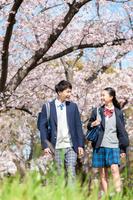 春に通学路を歩く日本の高校生