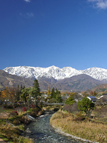 長野県 白馬村 紅葉の大出公園と白馬連峰初冠雪