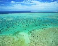 オーストラリア サンゴ礁