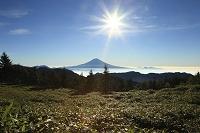 静岡県 山伏岳 富士山と朝日