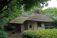 京都府 金福寺 新緑の芭蕉庵