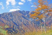 長野県 岩岳から唐松岳